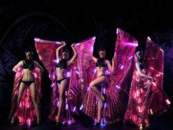 Танцевальное шоу Магестик